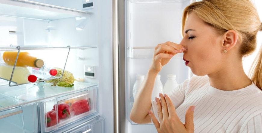 <span class='p-name'>Come pulire il frigo e il freezer: consigli di pulito</span>
