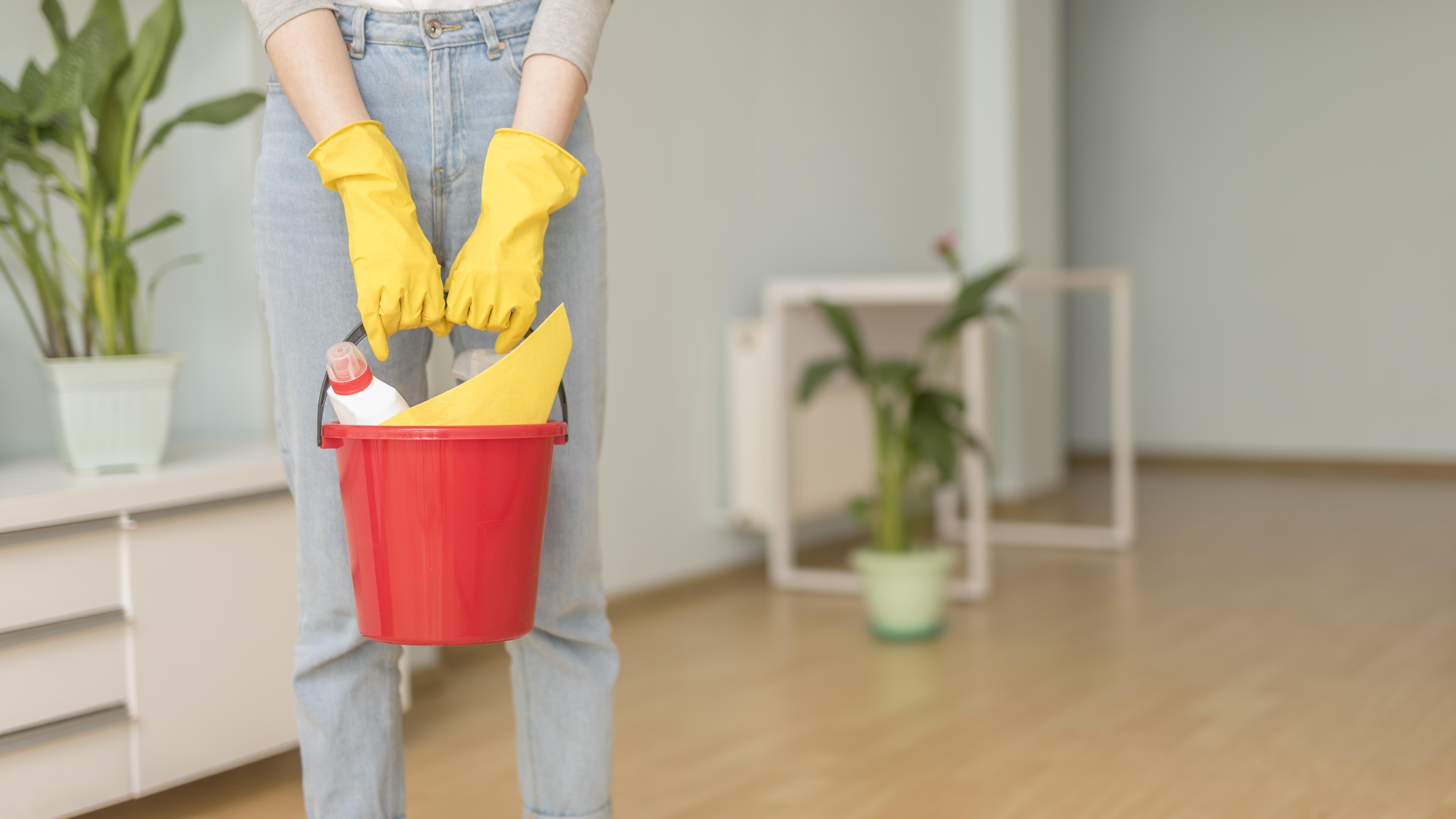 Come spolverare casa nel modo più veloce possibile